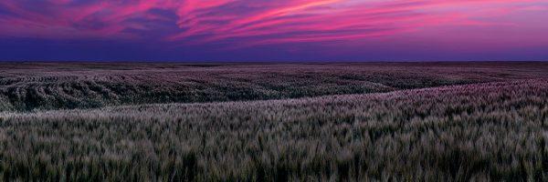 Sean Schuster Fine Art Photography Canada   Fields-of-Fire