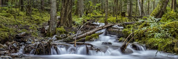 Sean Schuster Fine Art Photography Canada | Serenity