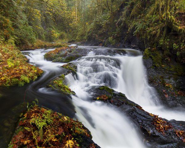 Sean Schuster Fine Art Photography Canada   Autumn Mist